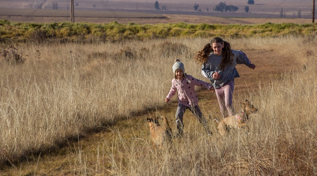 The best kid and dog friendly getaway in the Eastern Free State is Amohela ho Spitskop Country Retreat & Conservancy, in a valley between Ficksburg & Clocolan.